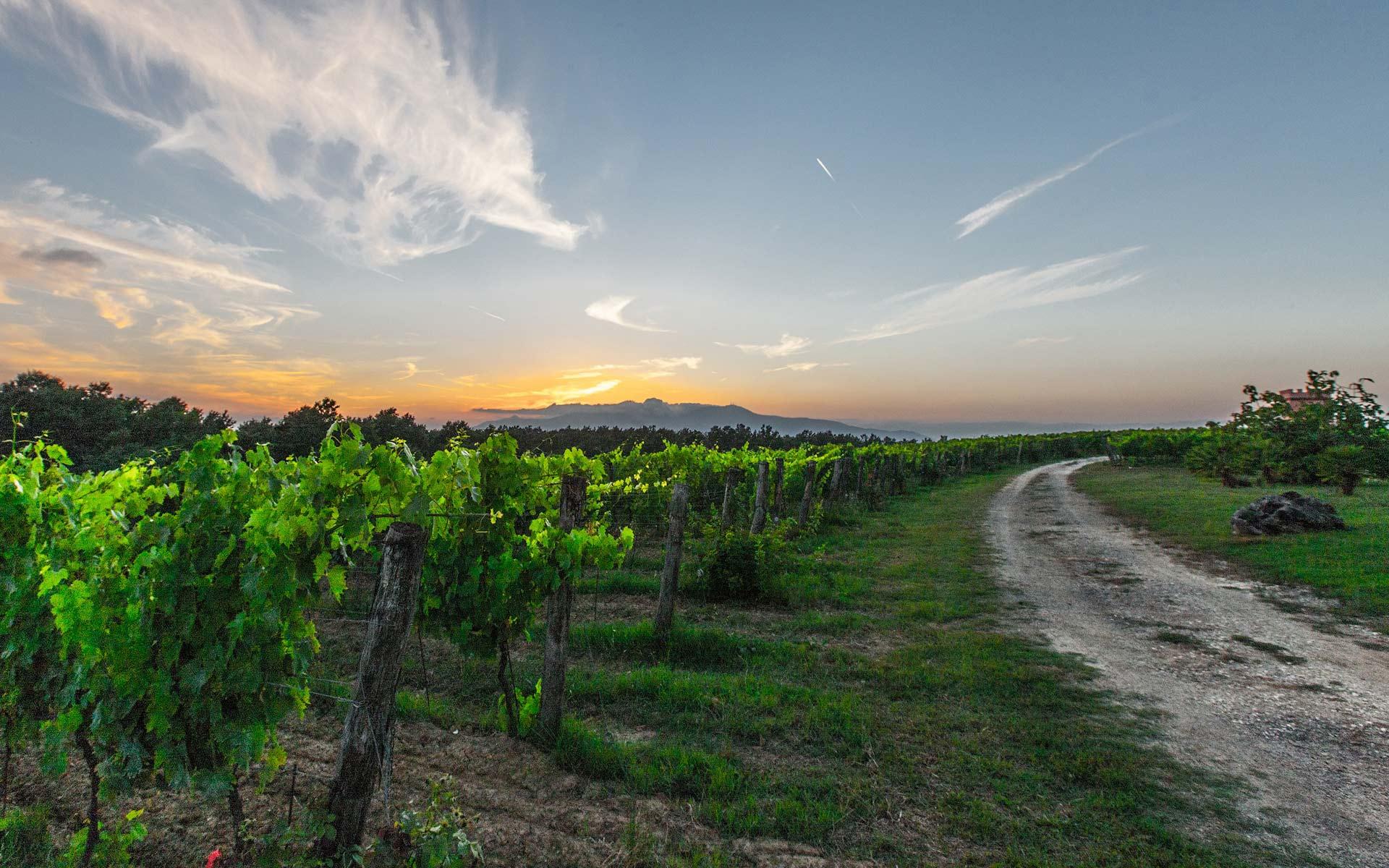 Adventure Through Tuscany
